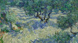 Кузнечик в «Оливковых деревьях» Ван Гога