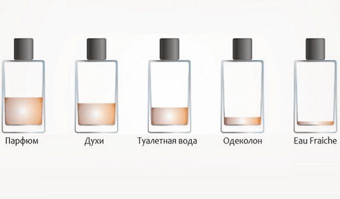 Духи, туалетная вода, парфюм… В чем разница?