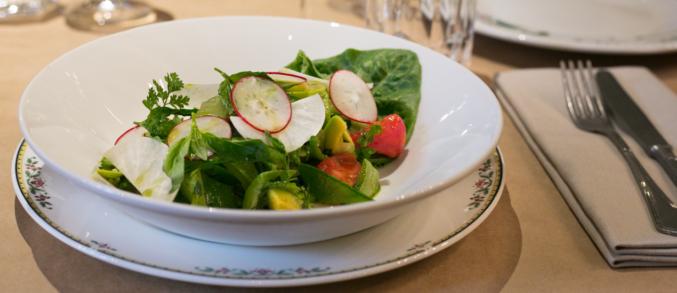 Salon: ресторан французской кухни А. Новикова