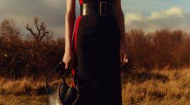 Alexander McQueen pre-fall 2018: все образы, которые будут актуальны этой осенью