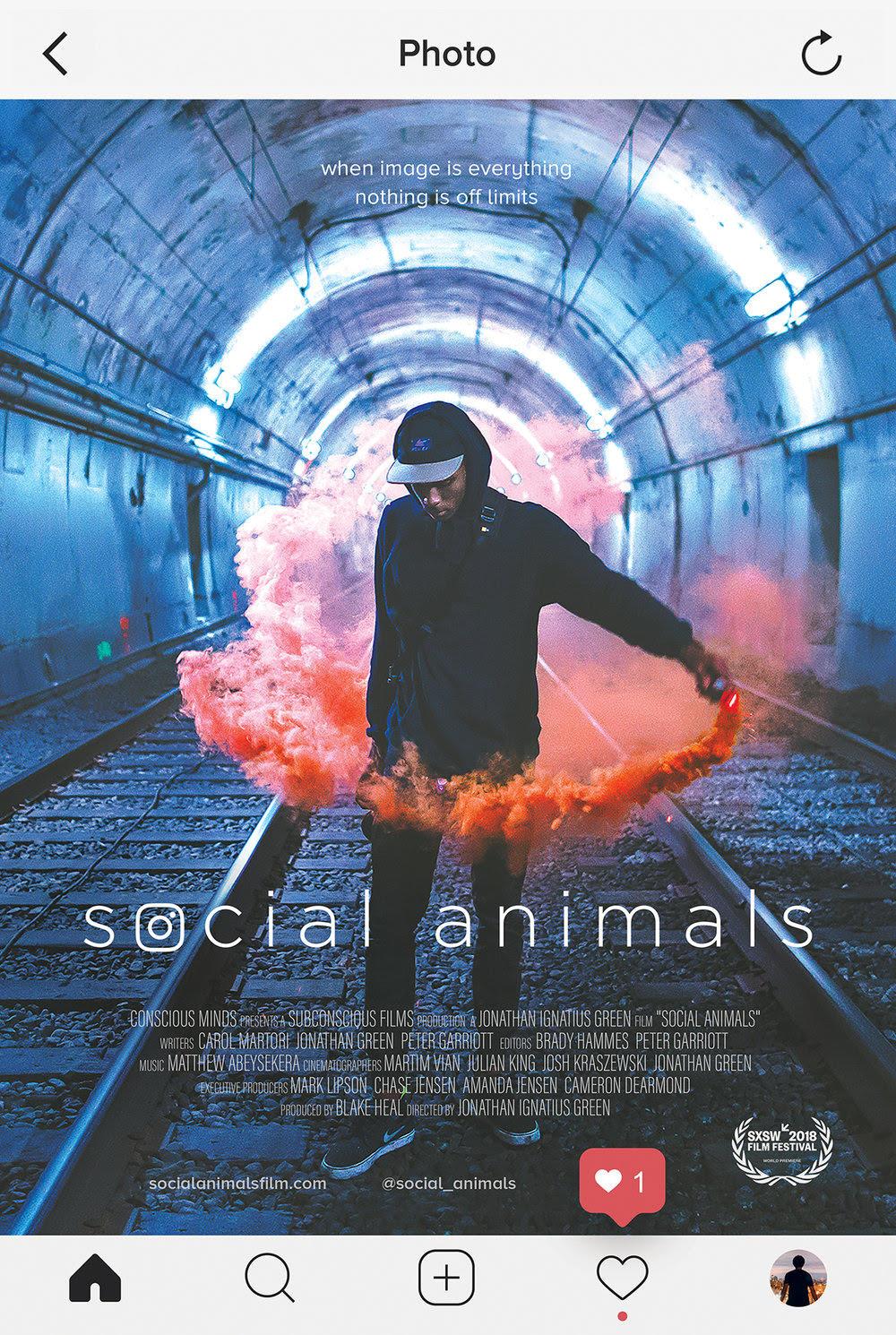 фильм Социальные животные
