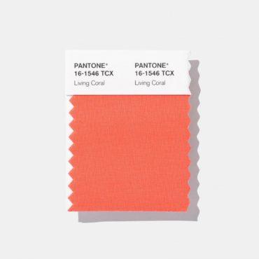 Цвет 2019 года по версии  института Pantone