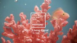 В цвете Pantone: Coral Living, который можно внедрить в гардероб