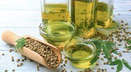 Суперфуд: польза семян конопли